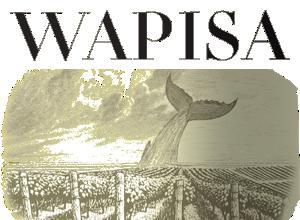 Wapisa