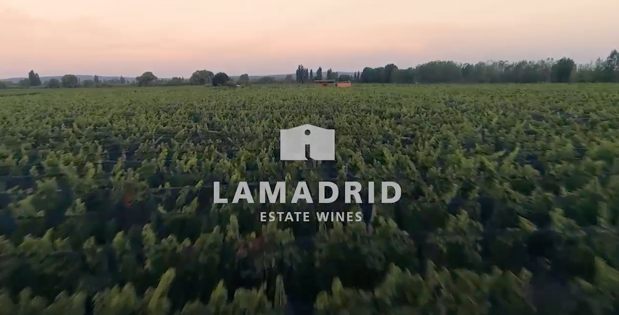 Lamadrid Promo 2020